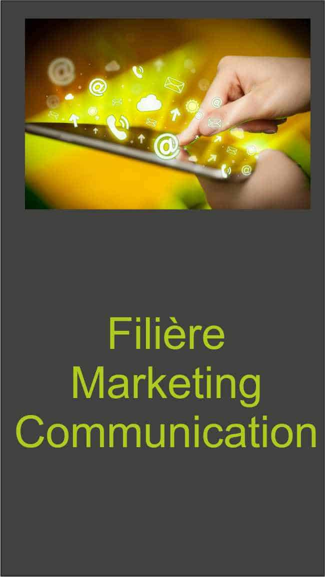 filiere bachelor marketing communication Ecole de commerce