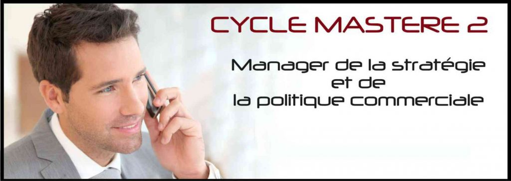 mastère marketing montpellier